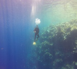 diver 300x270 - How To Experience Diving Using VR