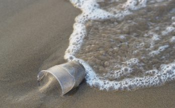beach plastic pollution 348x215 - Cleaner Ocean For A Happier Earth - How To Make A Difference?